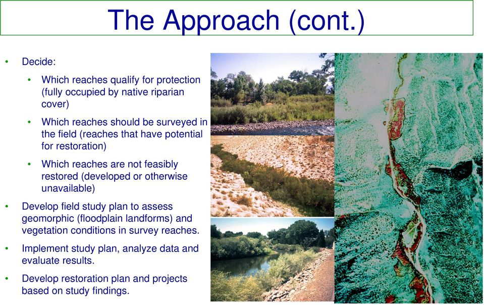 the field (reaches that have potential for restoration) Which reaches are not feasibly restored (developed or otherwise