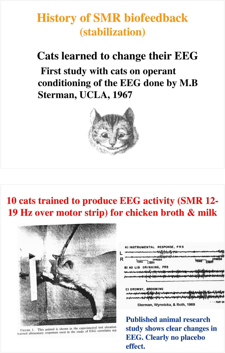 B Sterman, UCLA, 1967 10 cats trained to produce EEG activity (SMR 12-19 Hz over motor