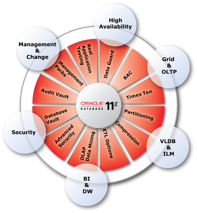 Oracle Database 11g The