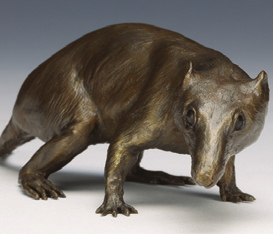 Read all about Morgie photo courtesy Smithsonian Museum of Natural History in by Betty Debnam Appearing in your newspaper on.