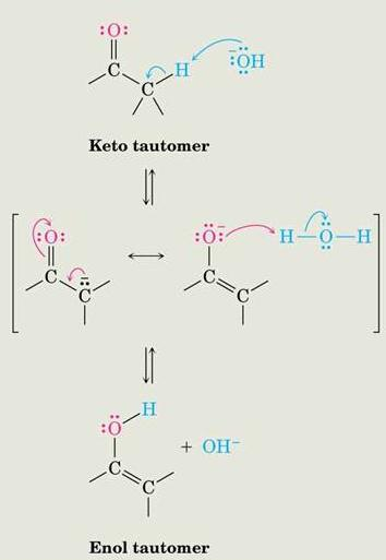1. Enol and enolate Base Catalysis of Enolization Brønsted bases catalyze keto-enol tautomerization The hydrogens on the carbon are weakly