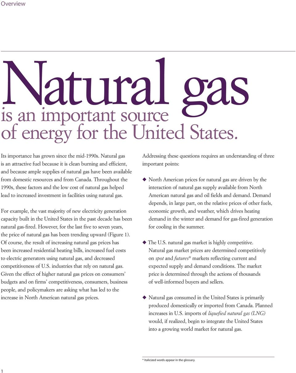 Throughout the 1990s, these factors and the low cost of natural gas helped lead to increased investment in facilities using natural gas.