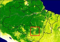 Low : -3000 Goal to identify deforestation locations from MODIS data that is: -FAST: as automated # Sinop as possible -EASY: minimizes data storage and processing time -ACCURATE: minimizes false