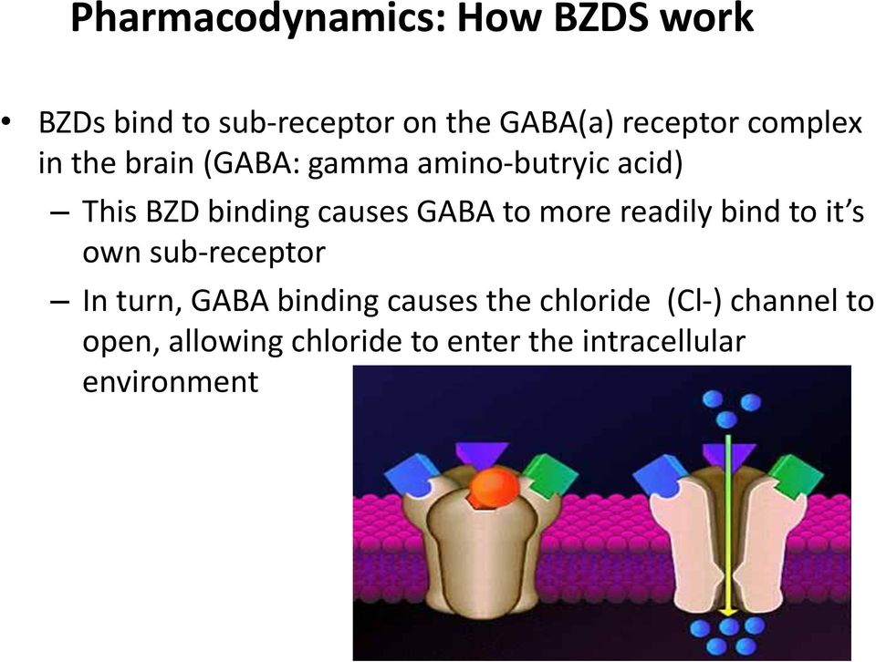to more readily bind to it s own sub-receptor In turn, GABA binding causes the