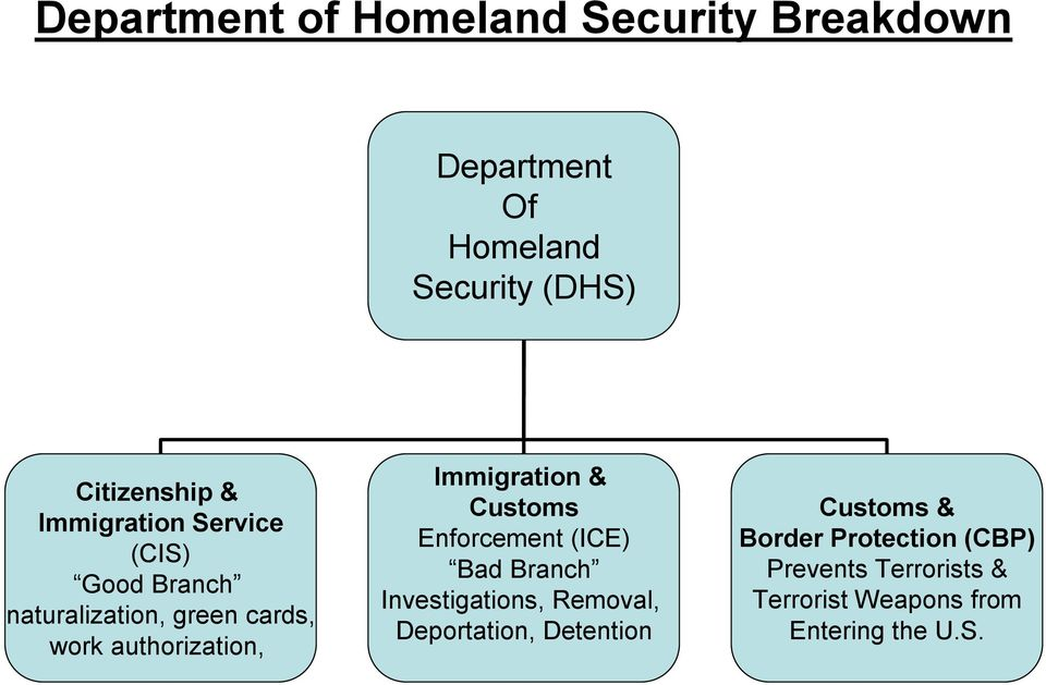 Immigration & Customs Enforcement (ICE) Bad Branch Investigations, Removal, Deportation,