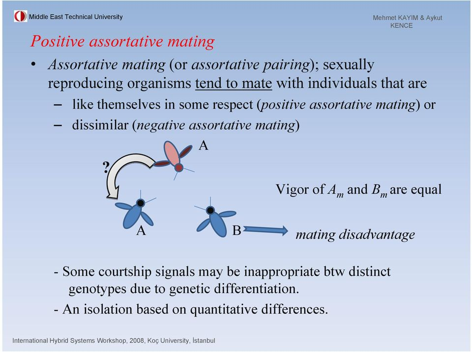 (negative assortative mating) A?