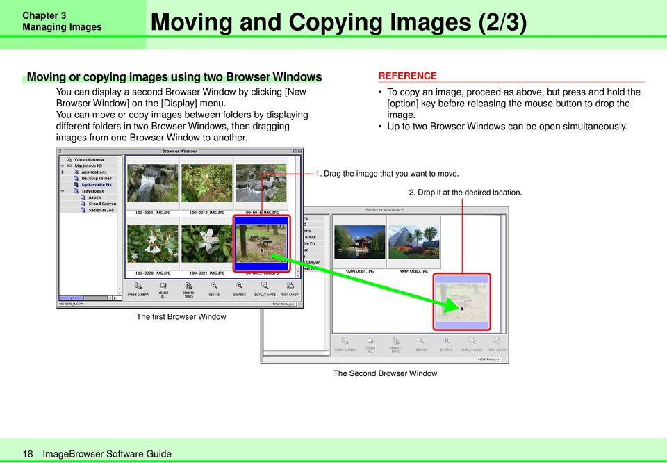 You can move or copy images between folders by displaying different folders in two Browser Windows, then dragging images from one Browser Window to another.