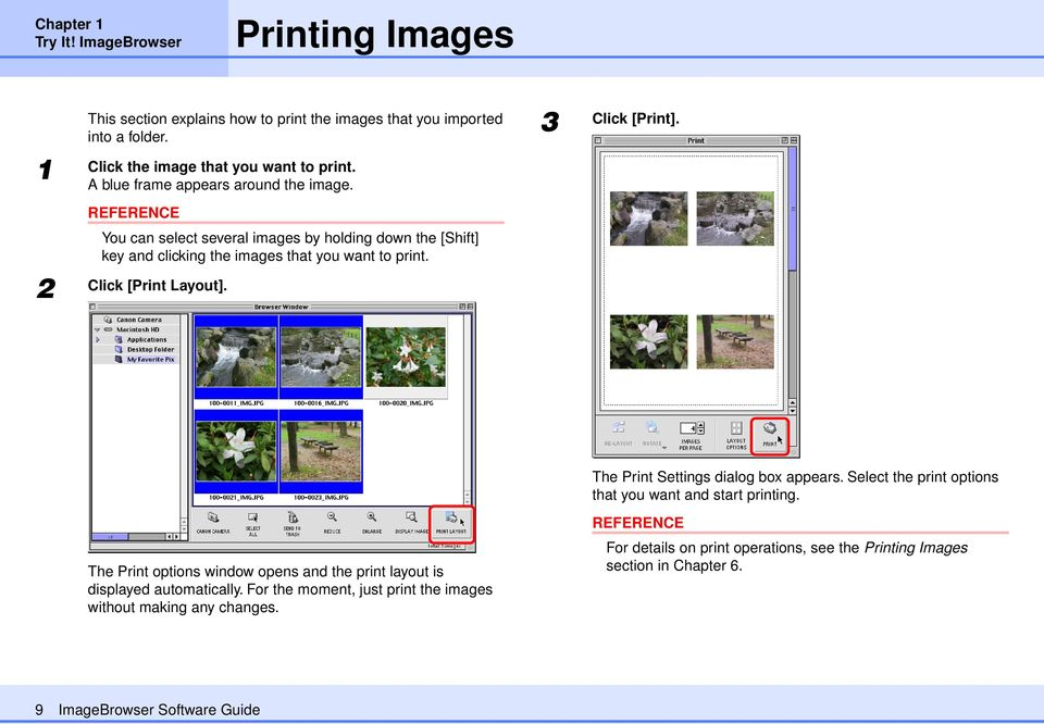 3 Click [Print]. The Print options window opens and the print layout is displayed automatically. For the moment, just print the images without making any changes.