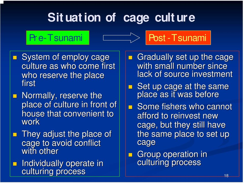 culturing process Post-Tsunami Gradually set up the cage with small number since lack of source investment Set up cage at the same place as it