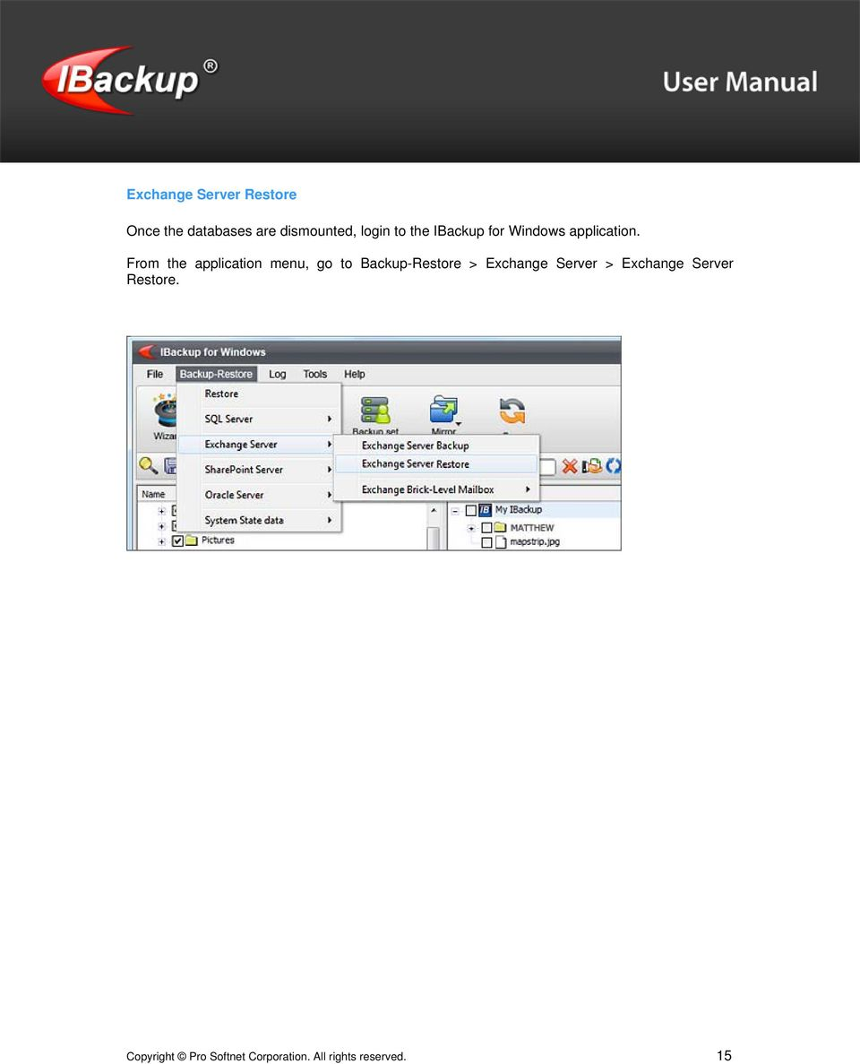 From the application menu, go to Backup-Restore > Exchange