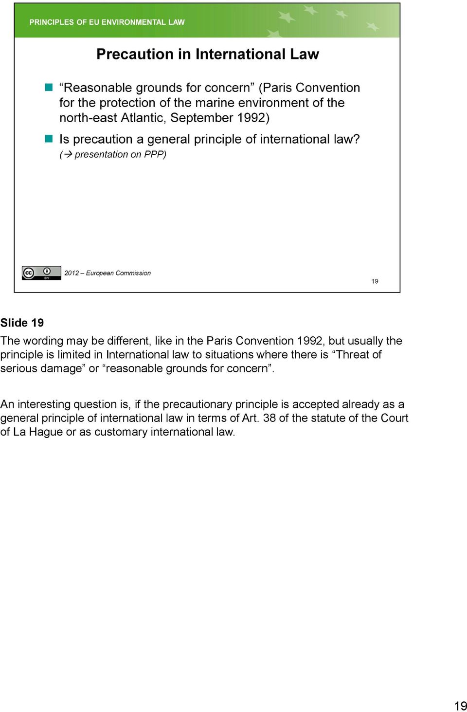 An interesting question is, if the precautionary principle is accepted already as a general principle of