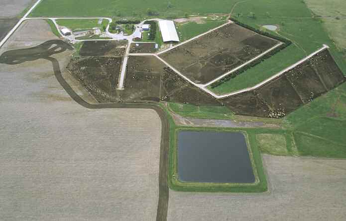 USDA/NRCS, Jeff Vanuga A Kansas feedlot operation with waste management lagoon in the foreground. is by destroying natural forest.