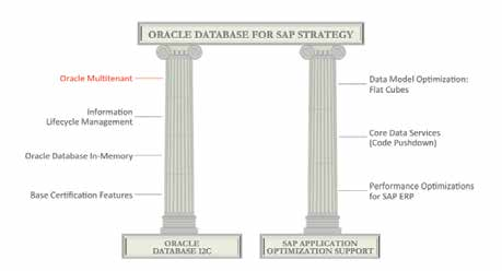oracle and sap application management tenzing