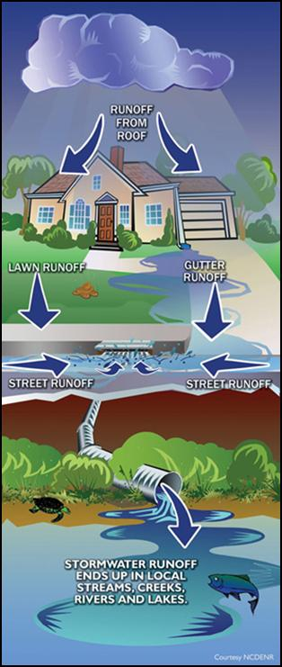 Runoff from agricultural land (and even our own yards) can carry excess manure or fertilizer into streams, lakes, and groundwater supplies.