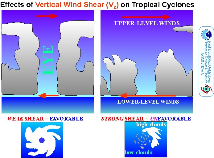 El-Nino and tropical cyclones Hurricanes do not like wind shear a rapid increase in wind speed with height.