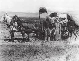 Life in the Wild This story is set in Nebraska in the 1870s. Many African Americans joined the thousands of homesteaders who moved west in those years. The homesteaders faced many challenges.
