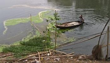 Eutrophication Occurs when excess nutrients enter an aquatic ecosystem resulting in a drastic increase in algae growth.