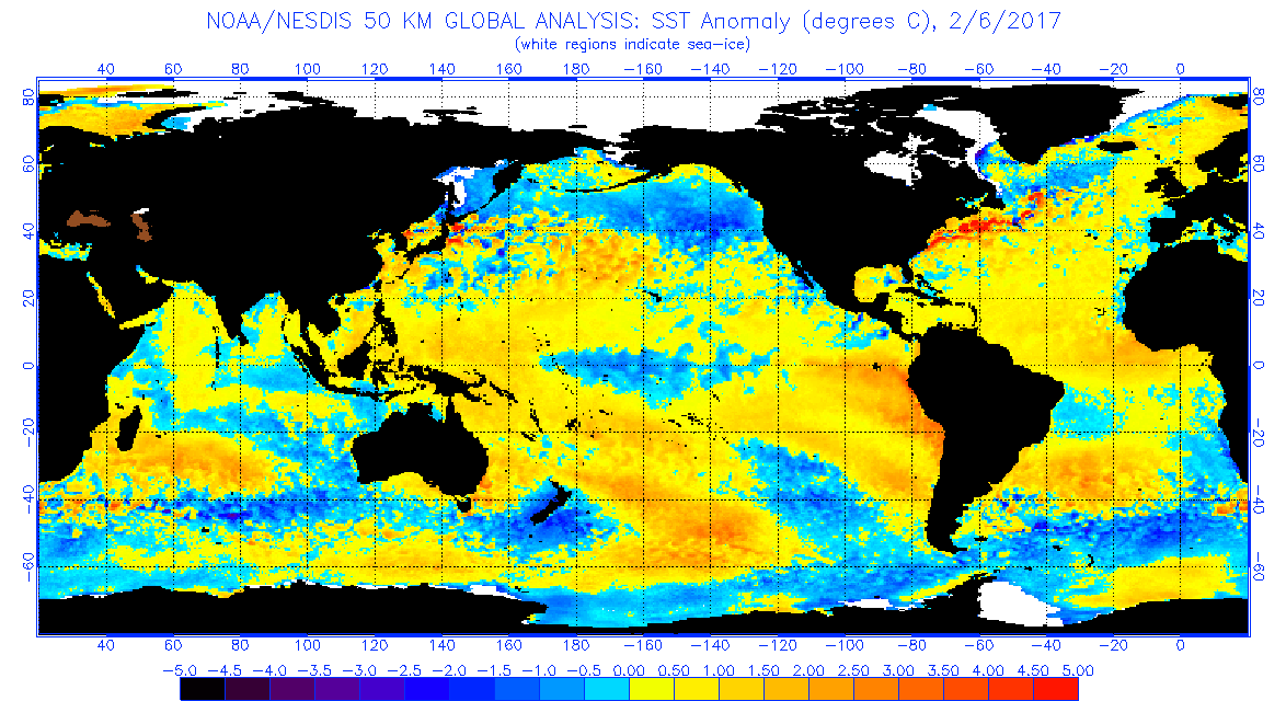 Figure 3 Global sea surface temperatures ( C) for the period ending February 6, 2017 (image from NOAA/NESDIS).