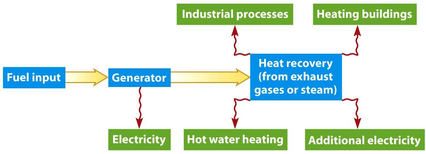 Cogeneration Production of two useful forms of