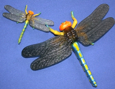 8. Dragonfly actual size: 3 inches long.