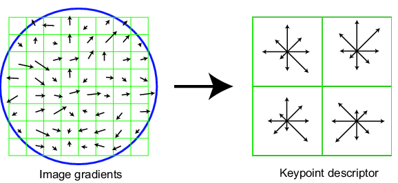 SIFT keypoint descriptor Compute from keypoint specific image patch: Centered around keypoint (as usual) Oriented and scaled according to keypoint (rotation, scale invariant extension) Based on