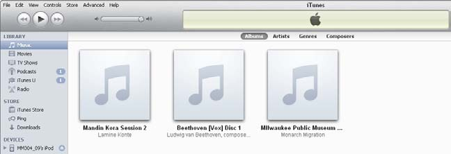 3. The audio file is automatically added to the itunes Library s Music menu.