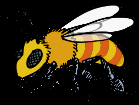 Why do bees swarm? Bees swarm because the hive is overcrowded and they need to find a new home to create a new colony.