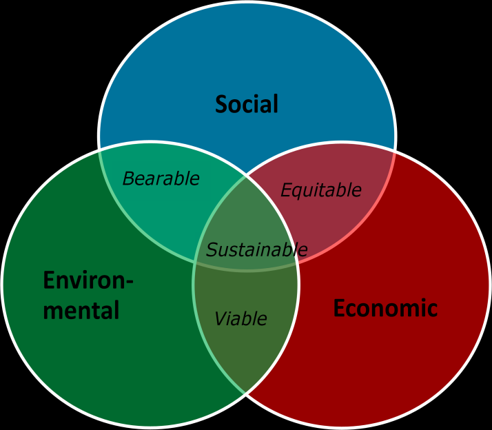 All solutions in Sustainia100 must have a relation to at least two of the main sustainability dimensions and must contribute substantially to the holistics of sustainability.