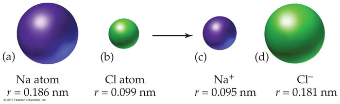 Each nonmetal ion is isoelectronic with the following noble gas, argon. 2011 Pearson Education, Inc.