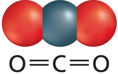 A covalent bond forms when atoms share valence electrons.
