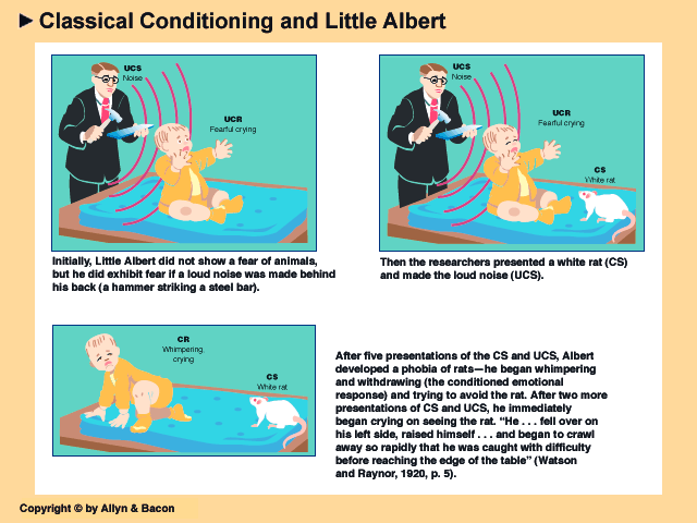 Baby Albert-Conditioned FEAR Baby Albert was initially conditioned to fear white rats,