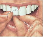 Step 3: Use your index fingers to move the floss between your teeth. Be sure to get the molars in back, too!