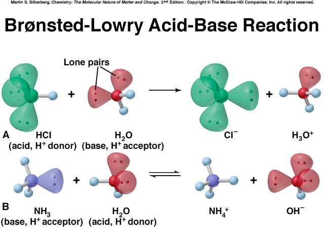 Brønsted-Lowry Acid-Base Definition An acid is a proton donor, any species that donates an H + ion.