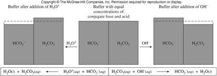 6 Buffered Solutions A buffer (also known as a buffer system) is a combination of a weak acid and its conjugate base (or a weak base and its conjugate acid) in about equal concentrations.