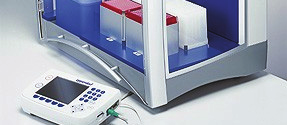 Real-Time PCR can detect as little as a two-fold change!
