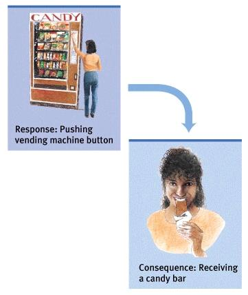 Operant Conditioning Response: Pushing vending machine button We learn to
