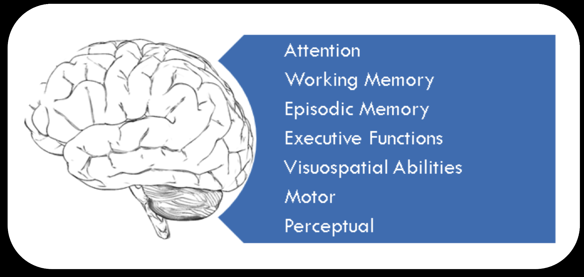 Cognitive Functions Often