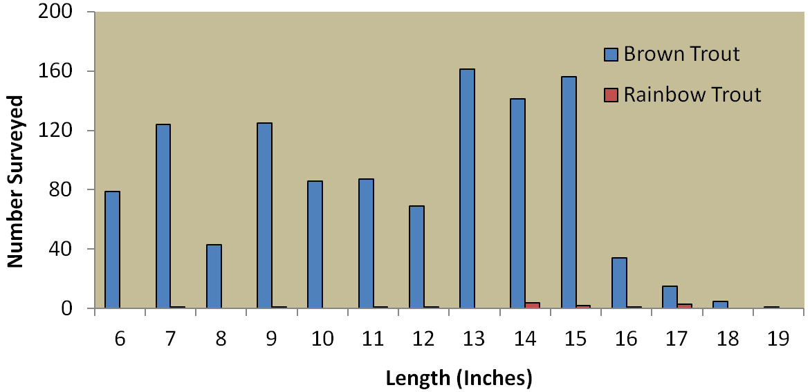 Historical density estimates for brown trout and rainbow trout in the Rio Grande at La