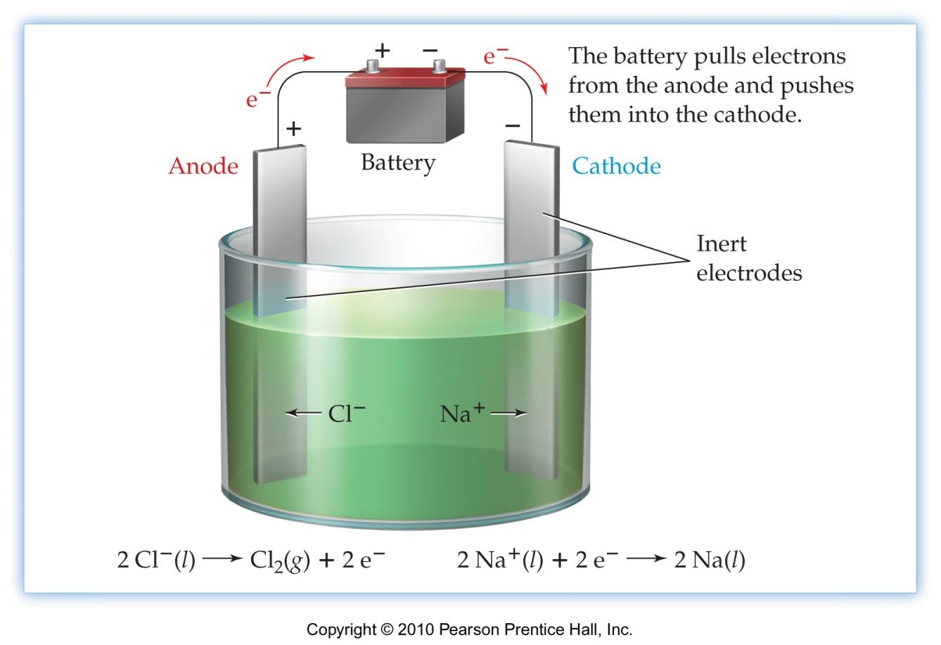 Electrolysis and Electrolytic Cells Cathode has negative charge, connected to negative terminal on battery; anode has positive