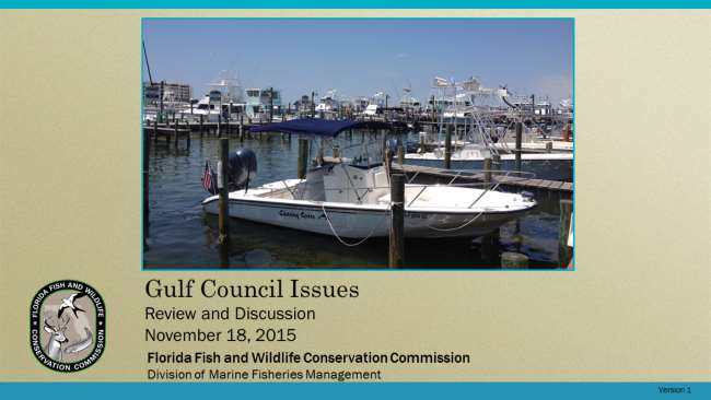 This is a review and discussion of actions and discussions from the Gulf of Mexico Fishery Management Council s