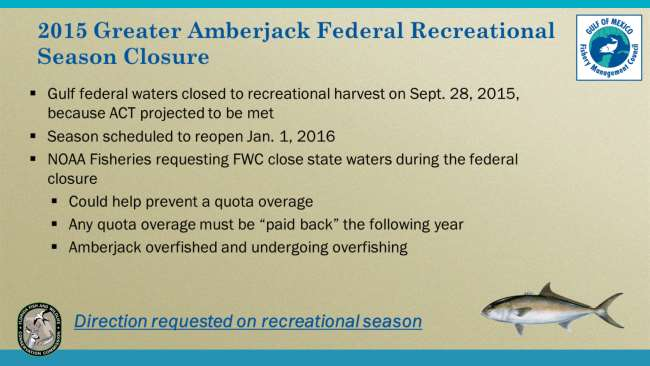 Greater amberjack closed to recreational harvest in Gulf federal waters for the remainder of the year on Sept. 28, 2015, because the recreational ACT was projected to be met.