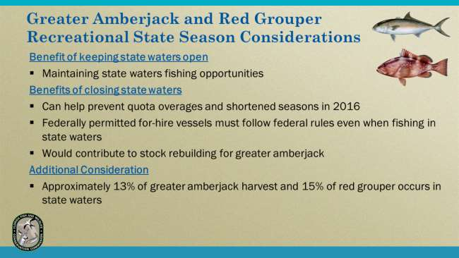 There are several factors to consider when addressing the seasons for recreational greater amberjack and red grouper in Gulf state waters.