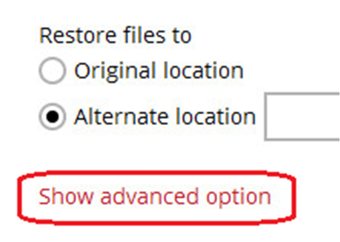When you perform a file restore on shared files or folders using a shared computer, it is recommended that you enable Restore file permissions by