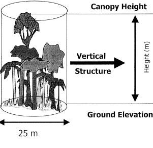 Vegetation structure from LiDAR (GLAS) Lidar metrics have been extensively used to characterize vegetation structure (Sun et al. 2008, Lefsky et al.