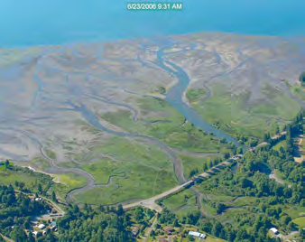 Section 544: Quilceda Estuary Spencer Island Twanoh Beach Twin Rivers Section 206: Chuckanut Estuary Deepwater Slough Everett Riverfront Wetland Harper Estuary Livingston Bay Implementation Approach