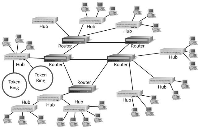 Enterprise-Wide Topologies Mesh networks Routers are interconnected with other routers,