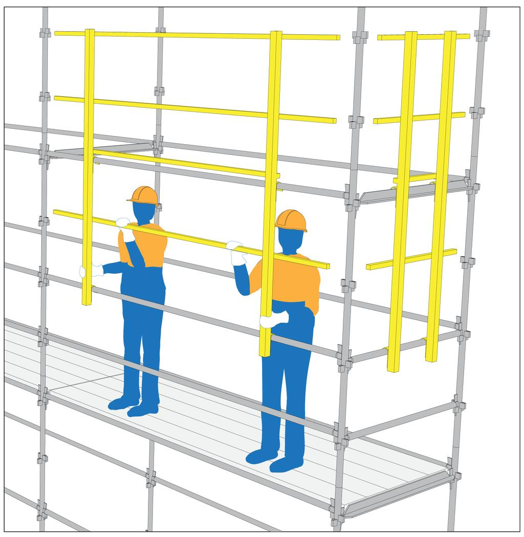 Because of their exceptional structural complexity, scaffolds can also be used for