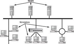 Web server Holds and delivers Web pages and other Web content and uses the Hypertext Transfer Protocol (HTTP) to deliver them. Mail server Hosts and delivers e-mail.