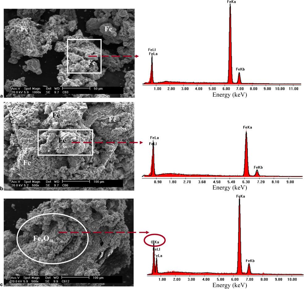Production of sponge iron powder by reduction of rolling mill scale a 3hb 6hc 12 h 4 secondary electron images of reduced mill fandeluxe Choice Image