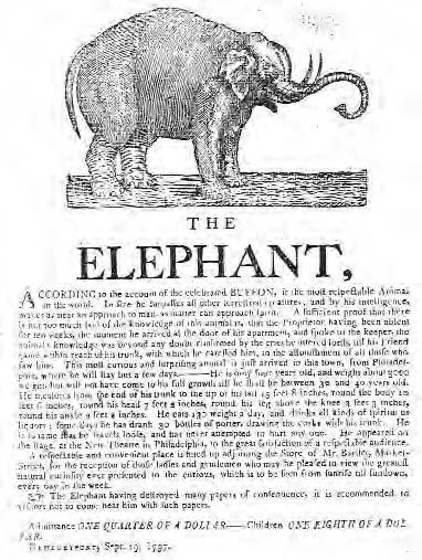 In The Late Eighteenth And Early Nineteenth Centuries Elephants Were Grandly Displayed As Wonders